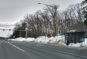 PRTC bus shelter 4 days after the storm passed.
